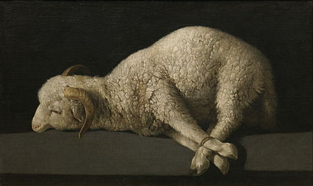 Personal Reflections: the Lamb of God