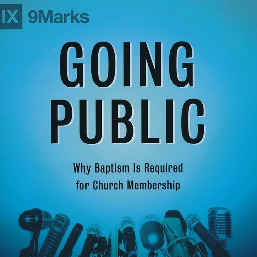 """Going Public"" by Bobby Jamieson"